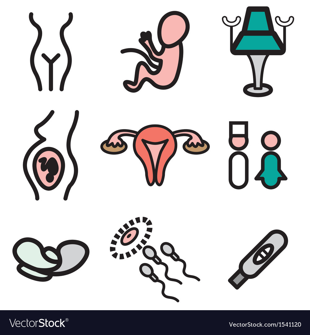 Logo icons gynecology vector | Price: 1 Credit (USD $1)