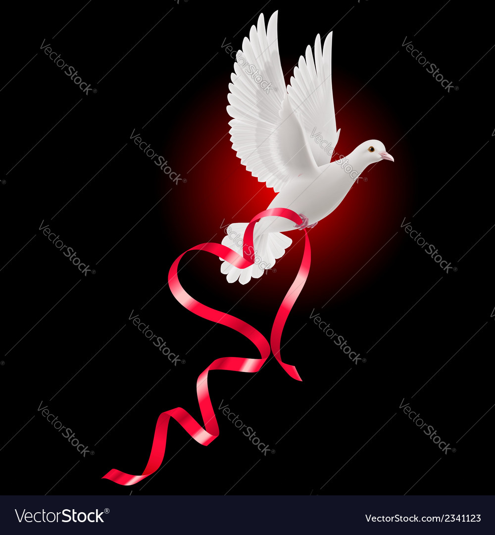 White dove with red ribbon vector | Price: 1 Credit (USD $1)