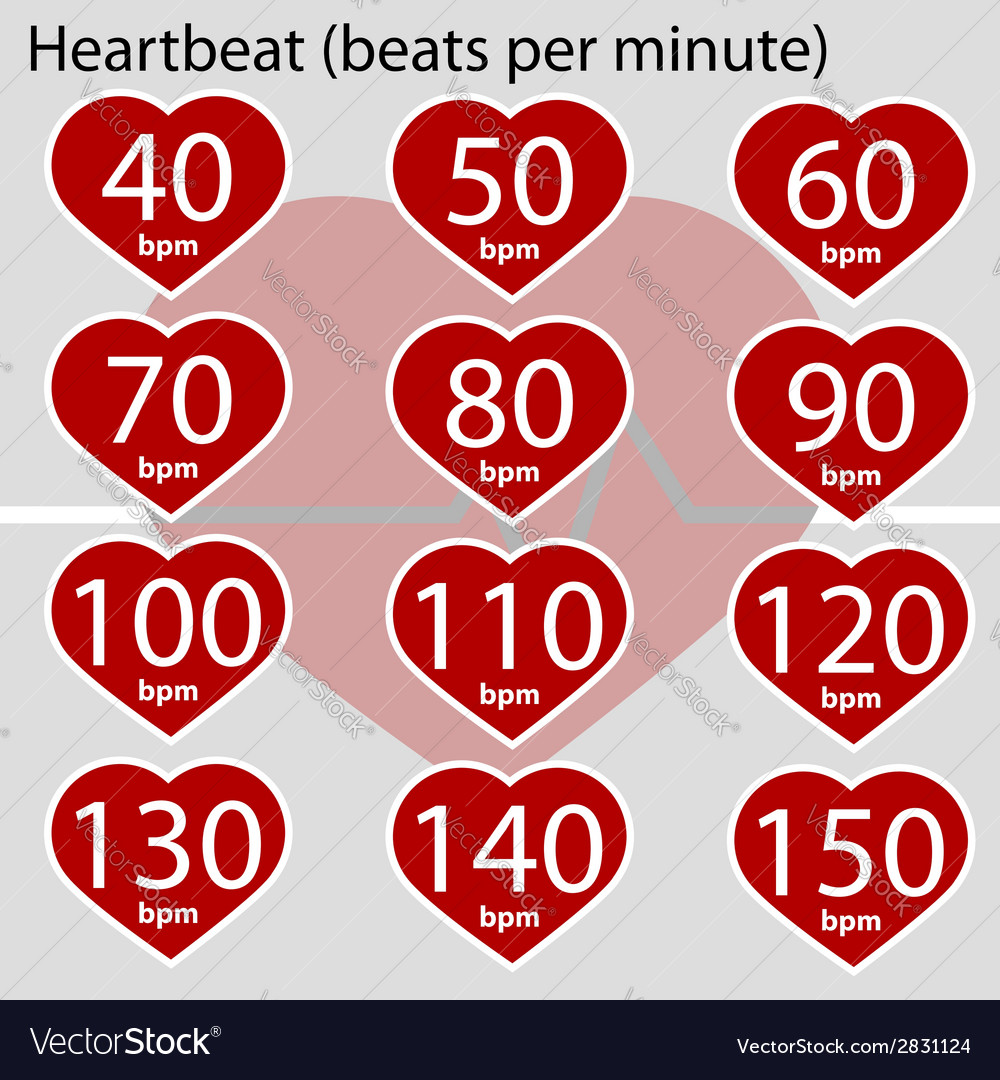 Heartbeat infographic vector | Price: 1 Credit (USD $1)
