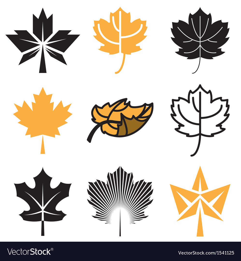 Logo icons mapleleaf vector | Price: 1 Credit (USD $1)