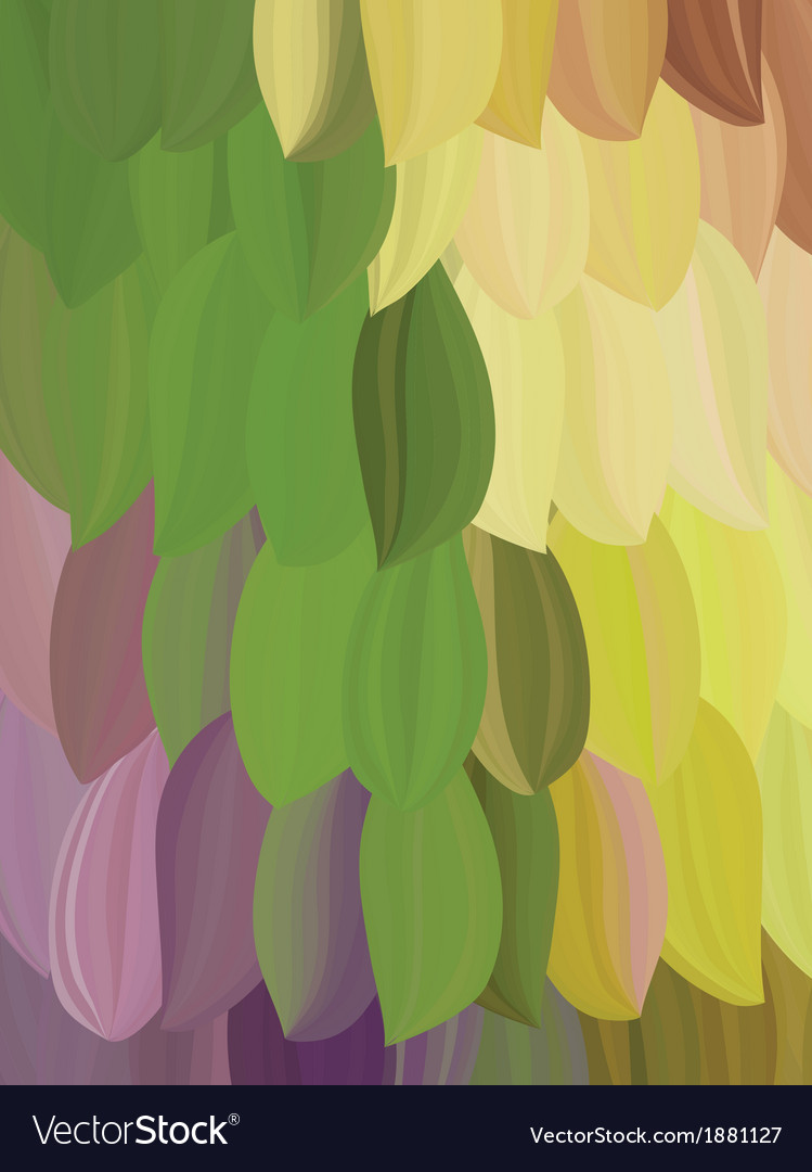 Background exotic parrot feather vector | Price: 1 Credit (USD $1)