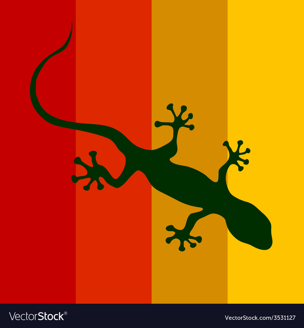 Salamander on a color background vector | Price: 1 Credit (USD $1)