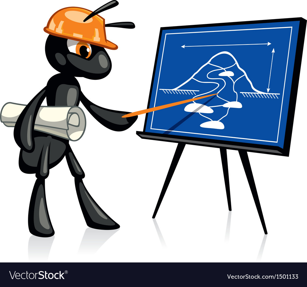 Building presentation vector
