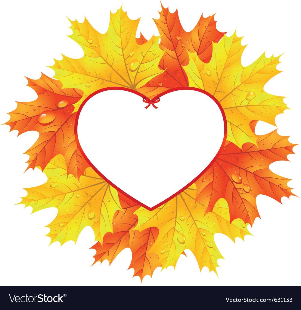 Maple leaves in the frame in the shape of heart vector | Price: 1 Credit (USD $1)