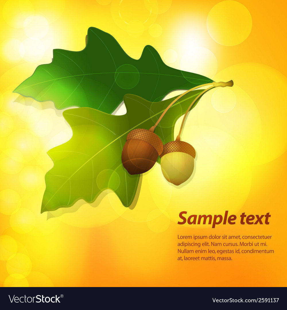 Autumn acorn background vector | Price: 1 Credit (USD $1)