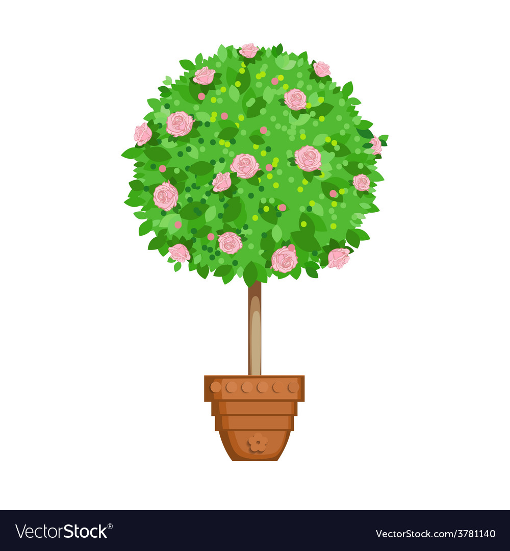 Flowering tree in a pot vector | Price: 1 Credit (USD $1)