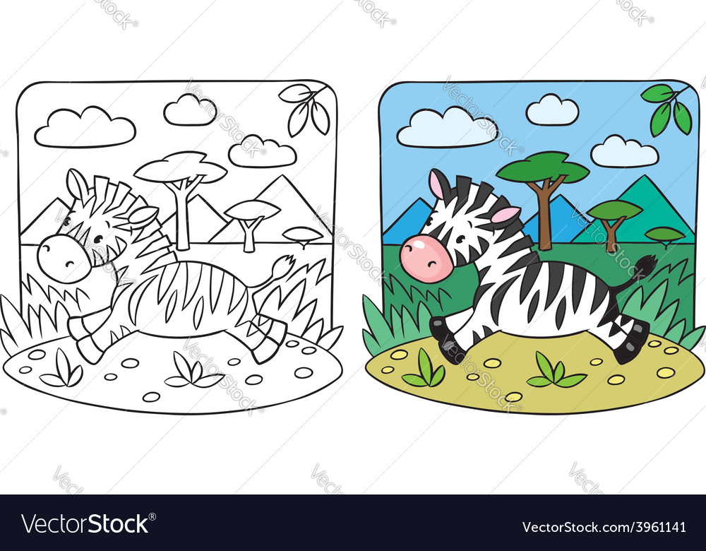 Little zebra coloring book vector | Price: 1 Credit (USD $1)
