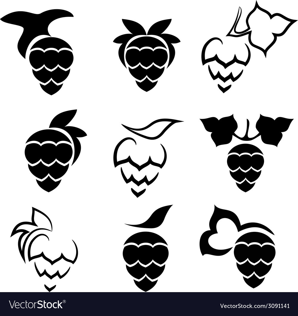 Set of hop plant with leafs vector | Price: 1 Credit (USD $1)
