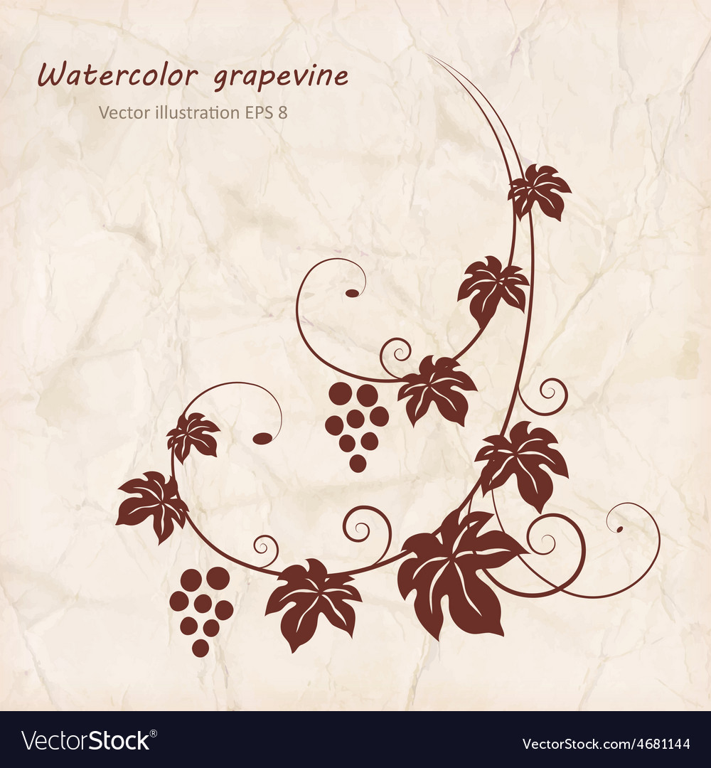 Grape vine with grunge paper texture background vector | Price: 1 Credit (USD $1)