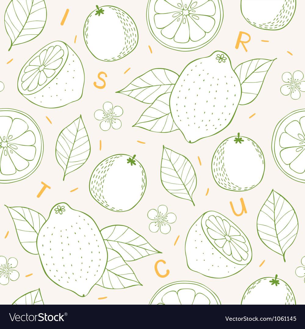 Citrus seamless pattern vector | Price: 1 Credit (USD $1)
