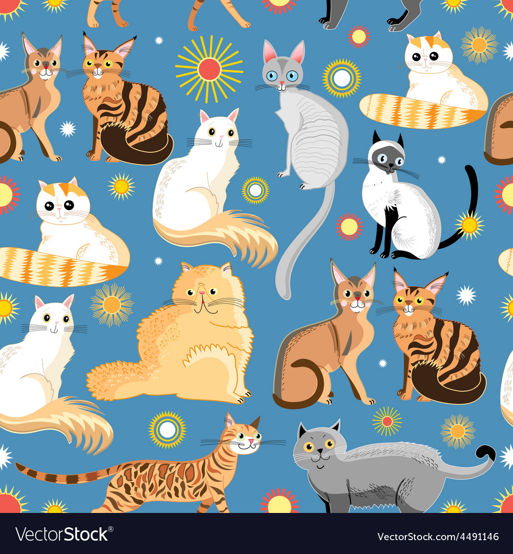 Graphic pattern different breeds of cats vector | Price: 1 Credit (USD $1)
