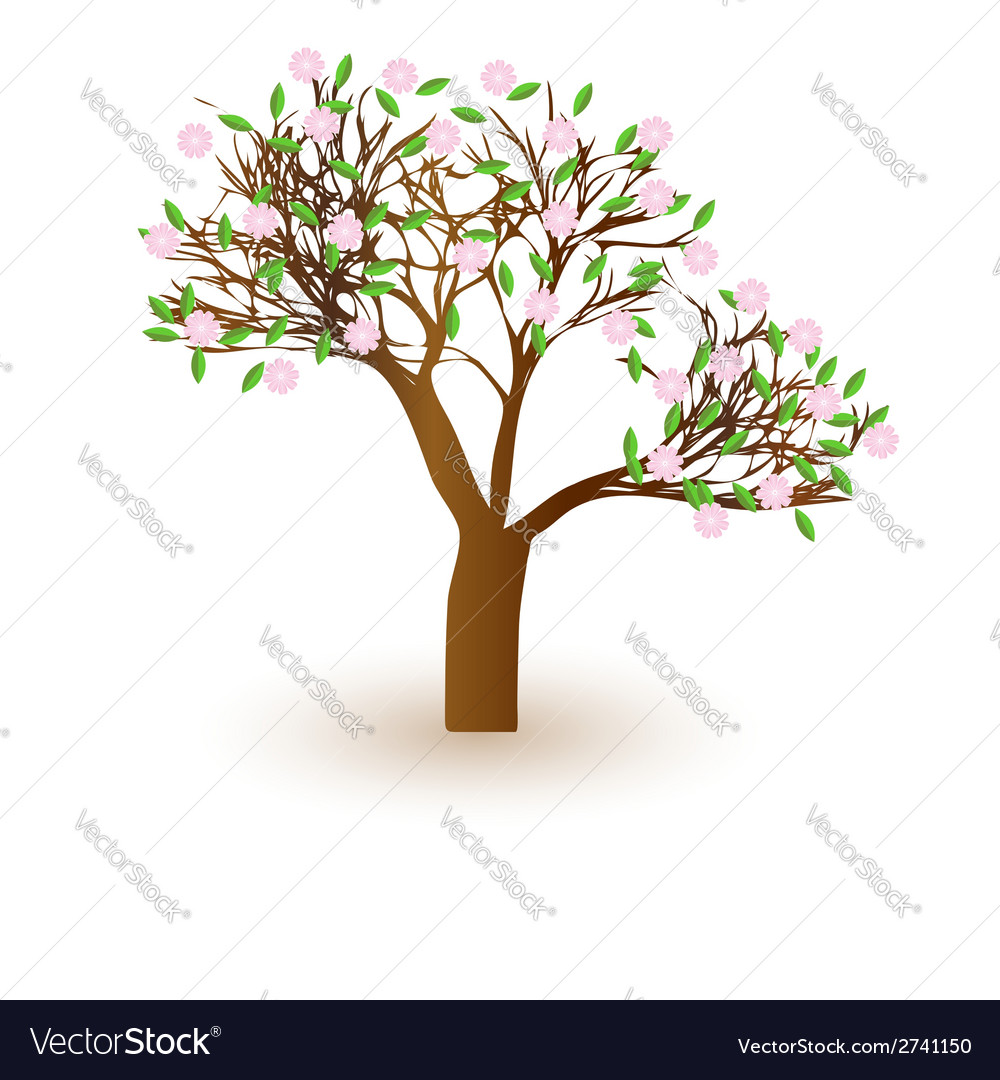 Isolated beautiful cherry blossom tree vector | Price: 1 Credit (USD $1)