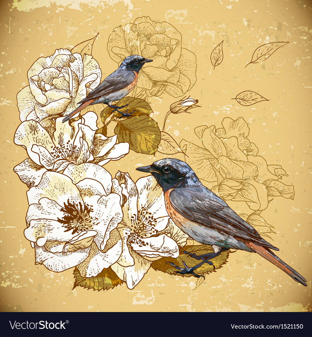 Vintage floral background with birds vector | Price: 1 Credit (USD $1)