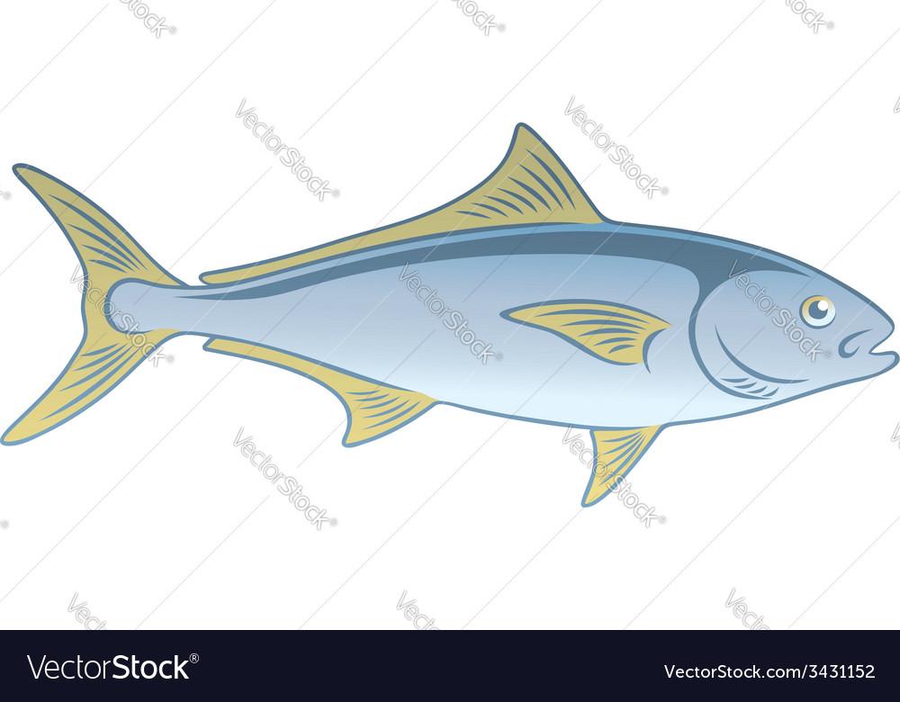 Fish amberjack vector | Price: 1 Credit (USD $1)
