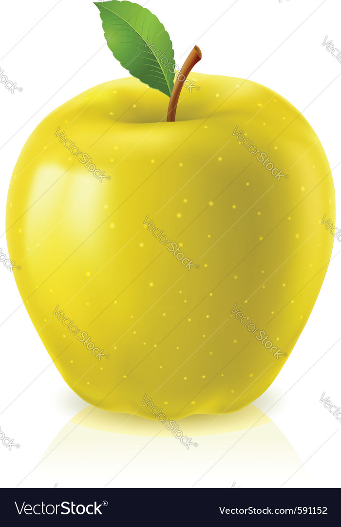 Yellow apple on white background vector | Price: 1 Credit (USD $1)
