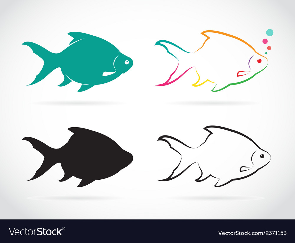 Group of fish vector | Price: 1 Credit (USD $1)