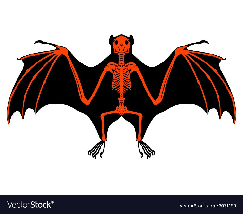 Bat skeleton vector   Price: 1 Credit (USD $1)