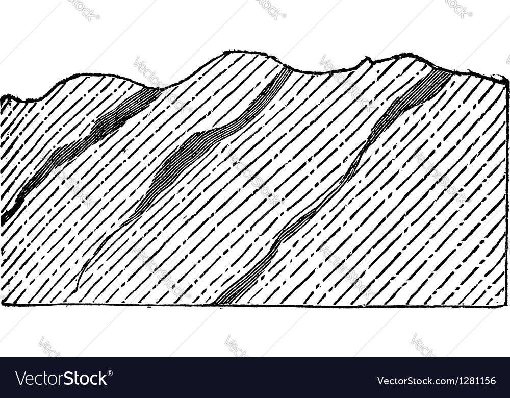 Geological vein vintage engraved vector | Price: 1 Credit (USD $1)