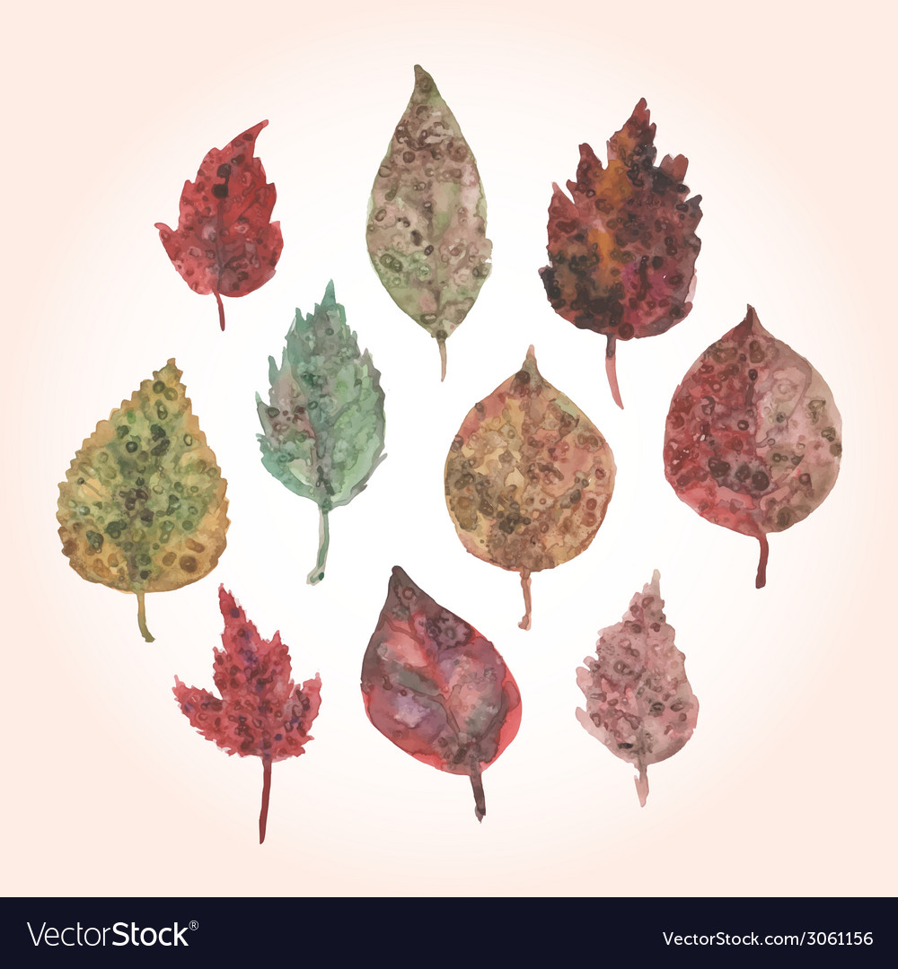 Watercolor set of autumn leaves paint stains vector | Price: 1 Credit (USD $1)