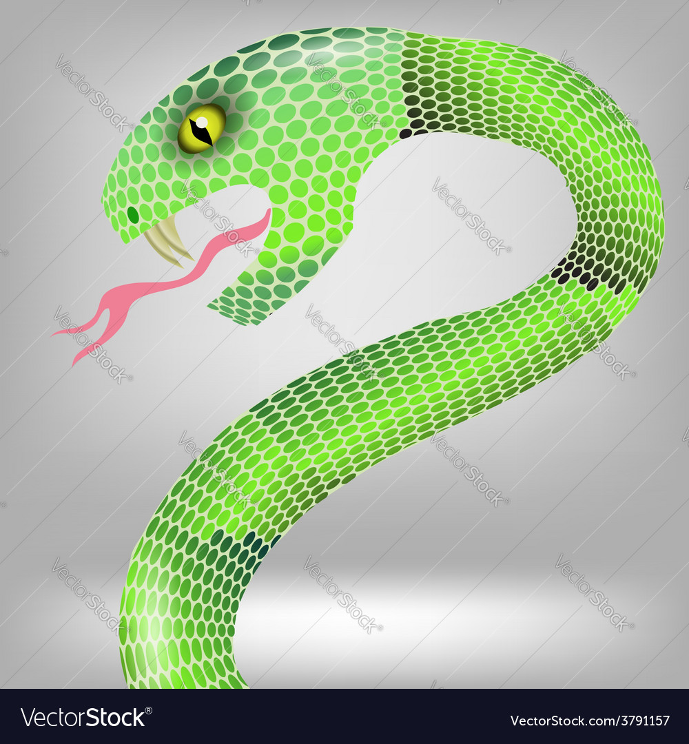 Green snake vector | Price: 1 Credit (USD $1)