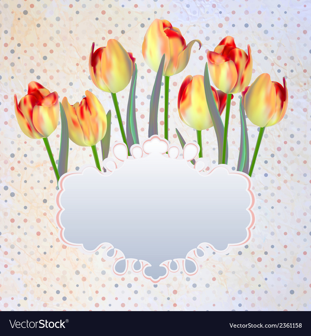 Vintage postcard with a beautiful tulips eps 10 vector | Price: 1 Credit (USD $1)
