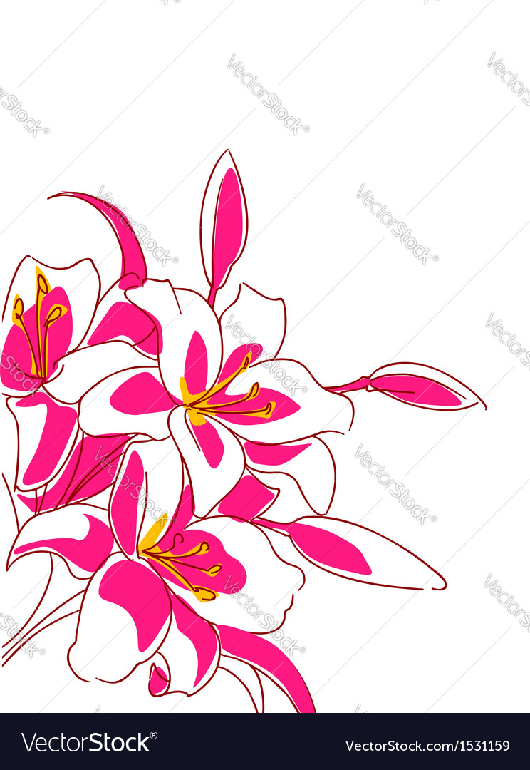 Beautiful bouquet of pink lilies vector | Price: 1 Credit (USD $1)