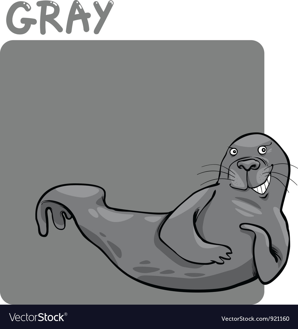 Color gray and seal cartoon vector | Price: 1 Credit (USD $1)