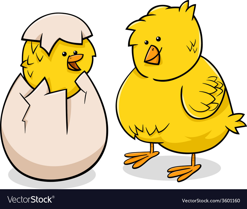 Easter chicks cartoon vector | Price: 1 Credit (USD $1)