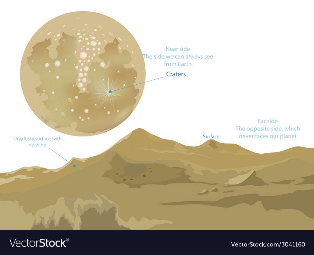 The moon vector | Price: 1 Credit (USD $1)