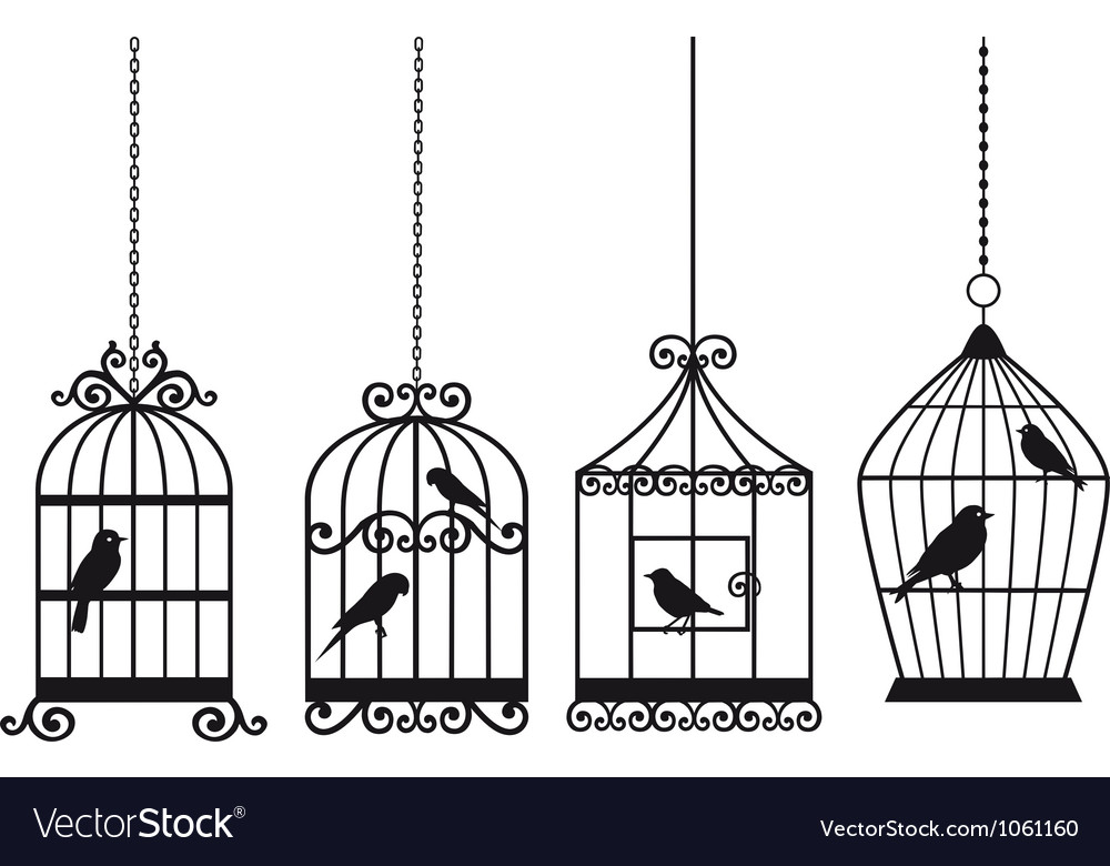 Vintage birdcages with birds vector | Price: 1 Credit (USD $1)