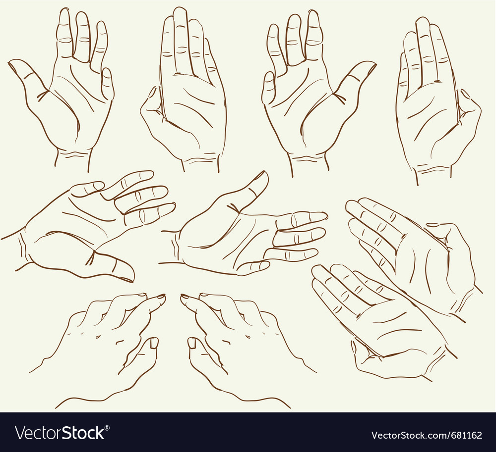 Hand drawing sketch vector | Price: 1 Credit (USD $1)