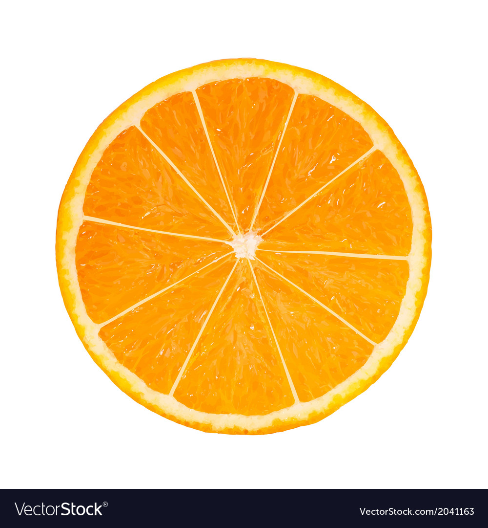 Photo-realistic orange slice vector | Price: 1 Credit (USD $1)