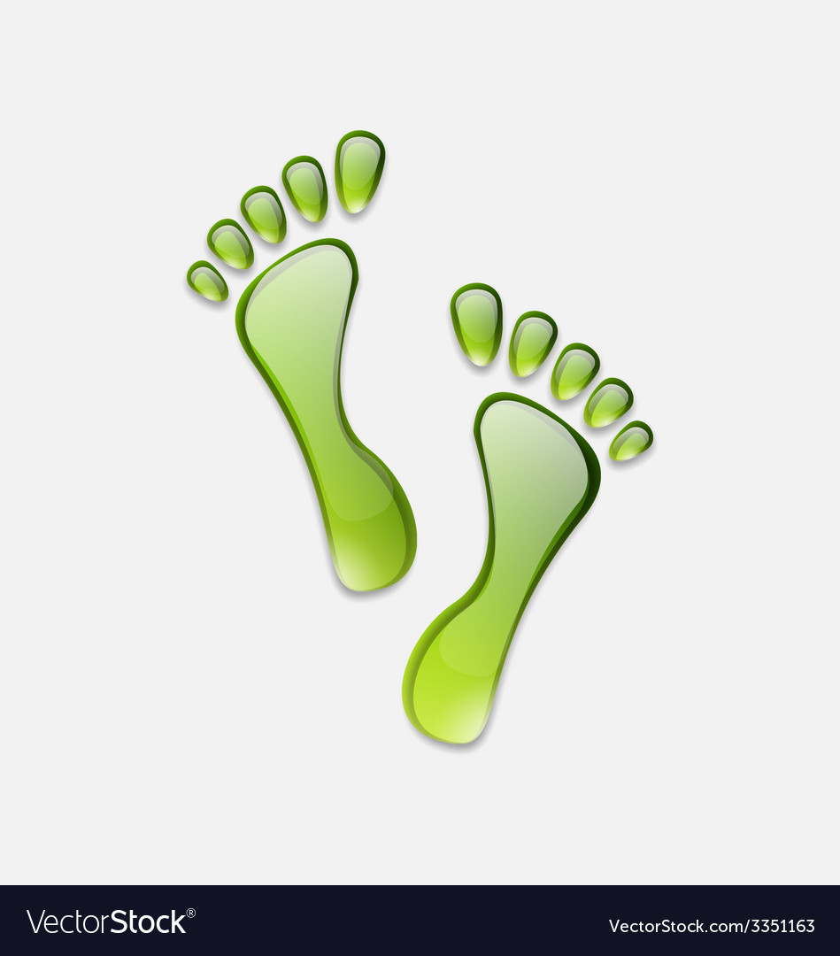 Water green human foot print isolated on white vector | Price: 1 Credit (USD $1)