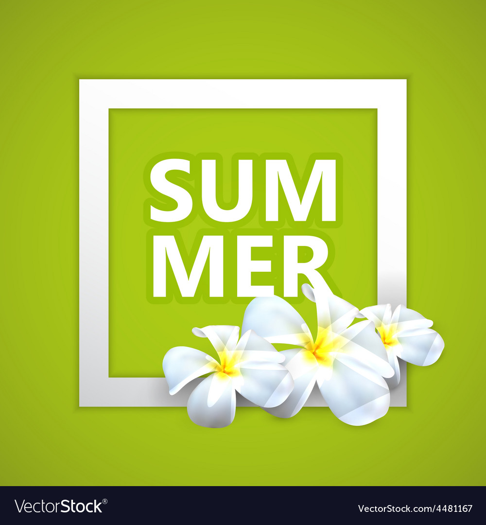 Summer label with exotic frangipani flowers vector | Price: 1 Credit (USD $1)