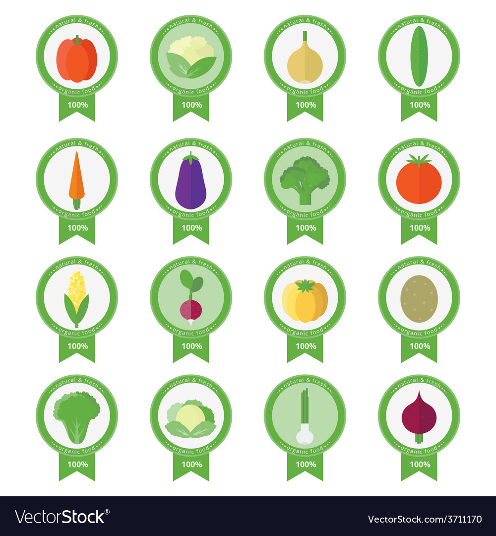 Banners stickers with fresh vegetables vector | Price: 1 Credit (USD $1)