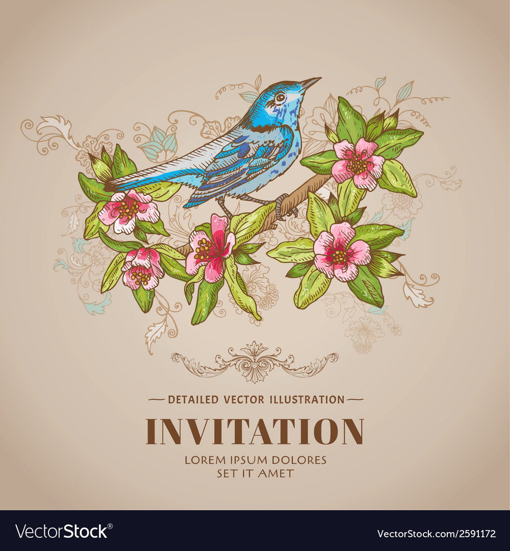 Spring bird -vintage card - hand-drawn vector | Price: 1 Credit (USD $1)