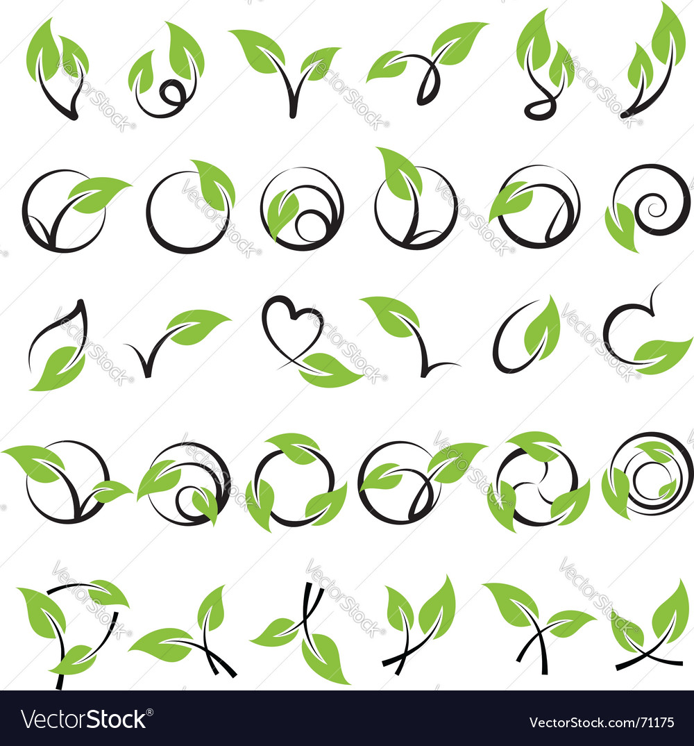 Leaves design elements vector | Price: 1 Credit (USD $1)