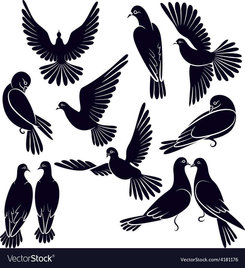Silhouettes of pigeons that fly and sit vector | Price: 1 Credit (USD $1)