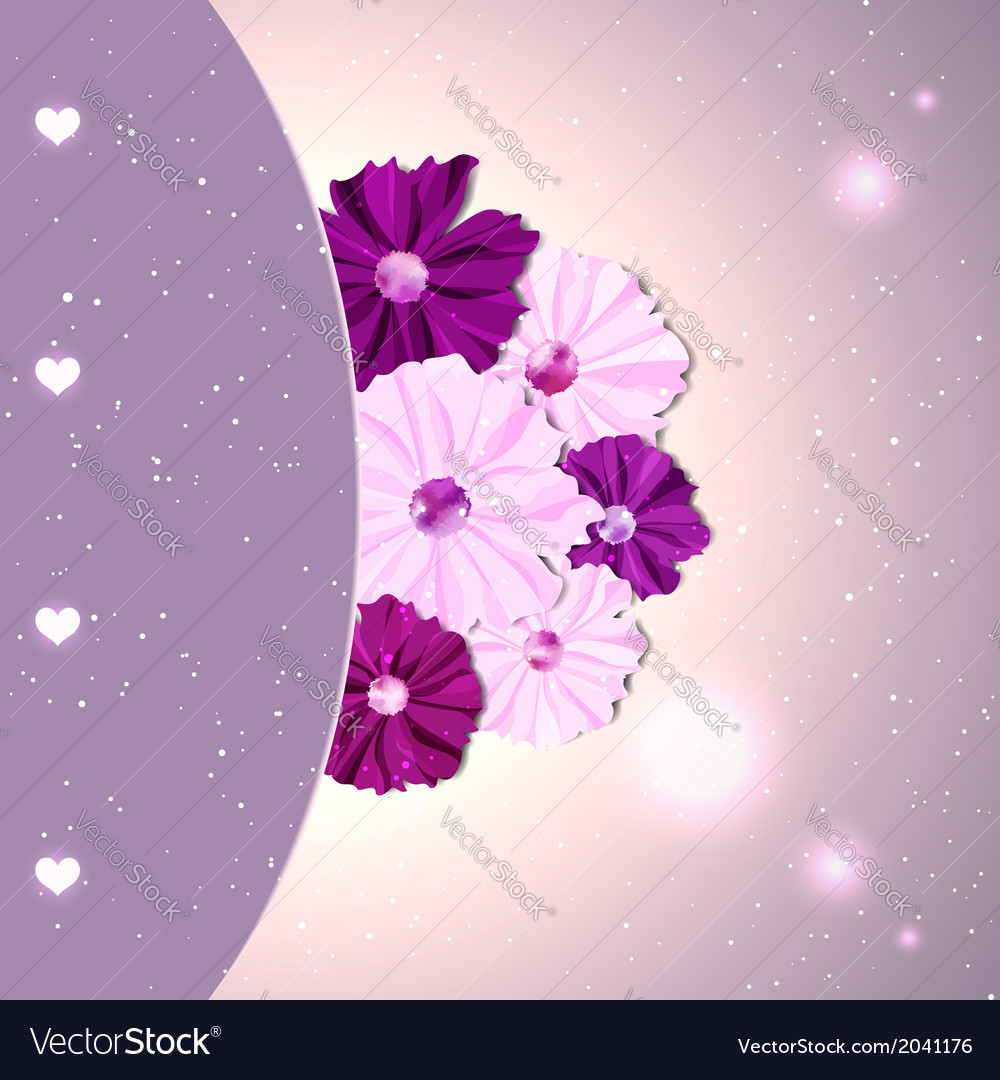 Springtime colorful cosmos flower vector | Price: 1 Credit (USD $1)