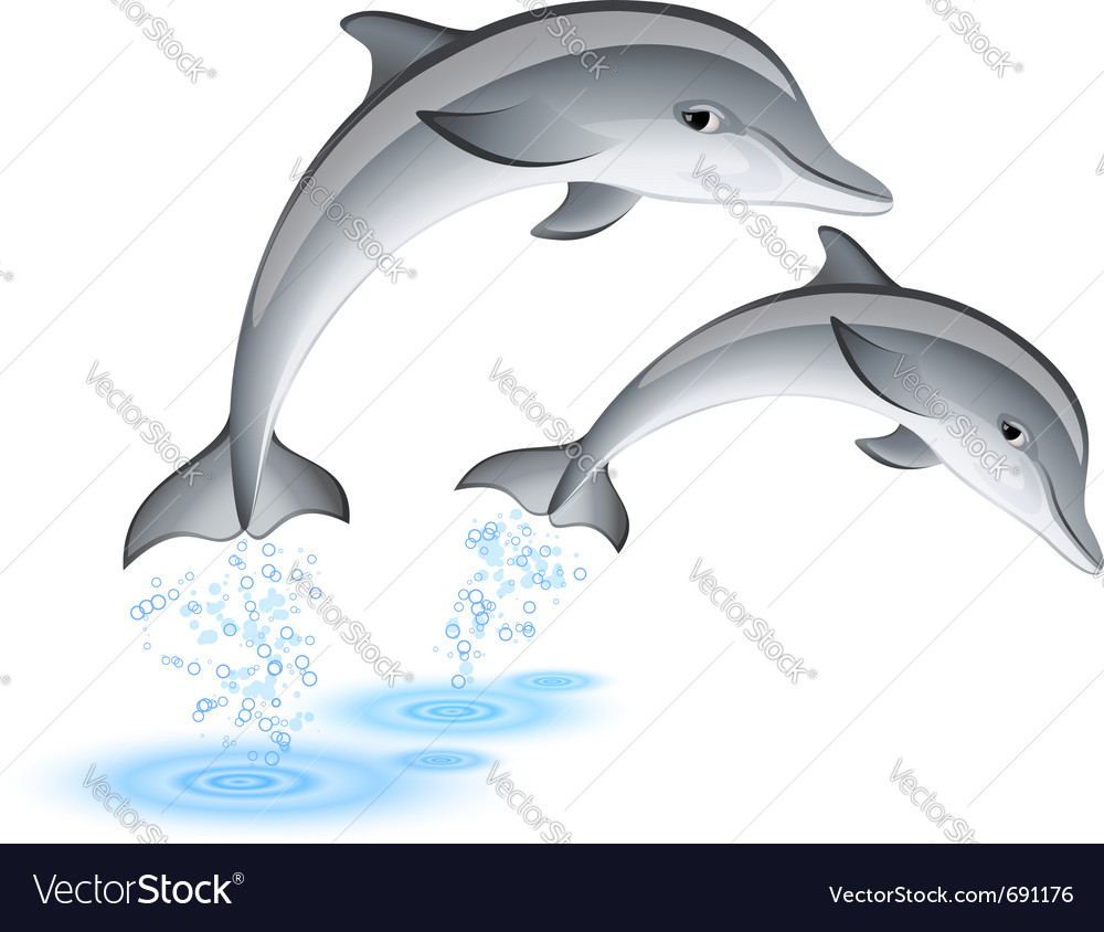 Two jumping dolphins vector | Price: 3 Credit (USD $3)