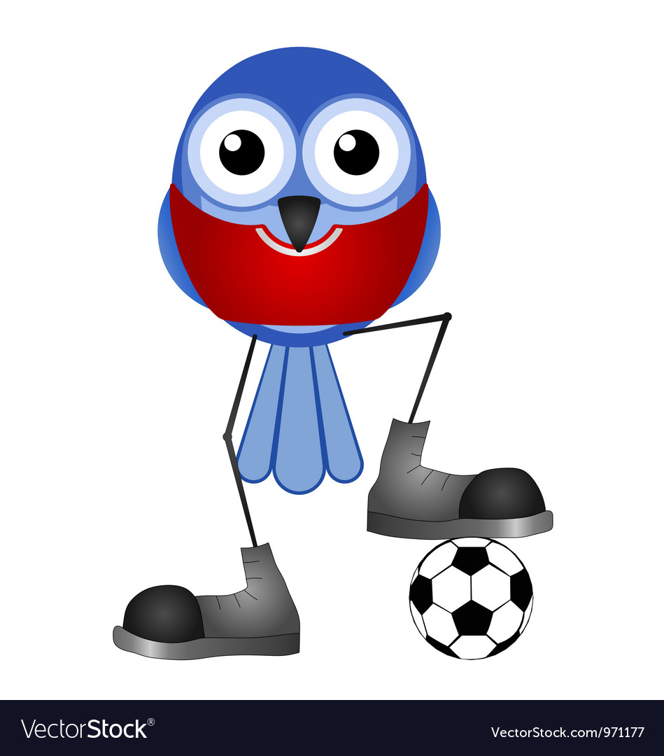 Birds soccer player red vector | Price: 1 Credit (USD $1)