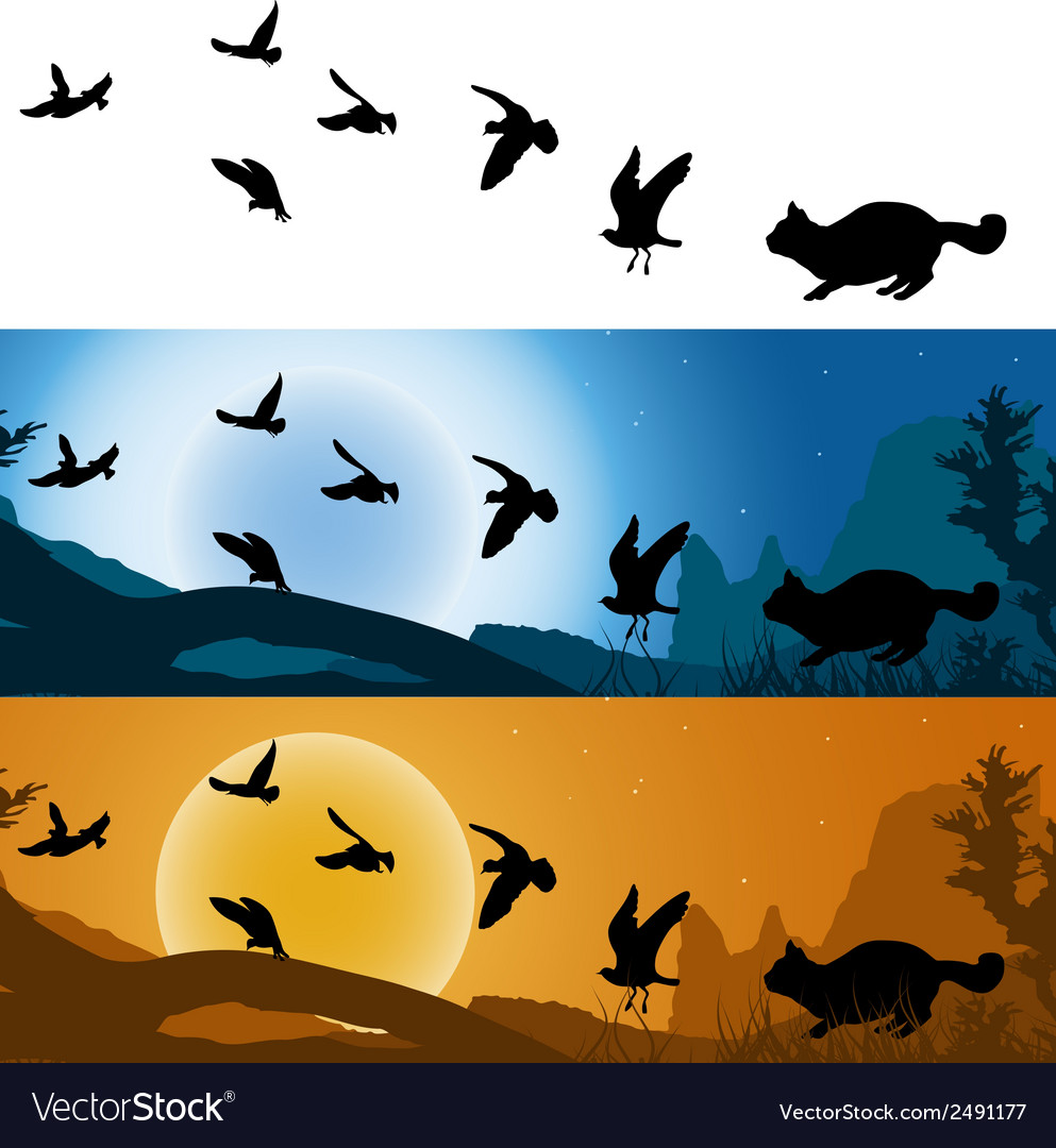 Cat hunter of birds vector | Price: 1 Credit (USD $1)