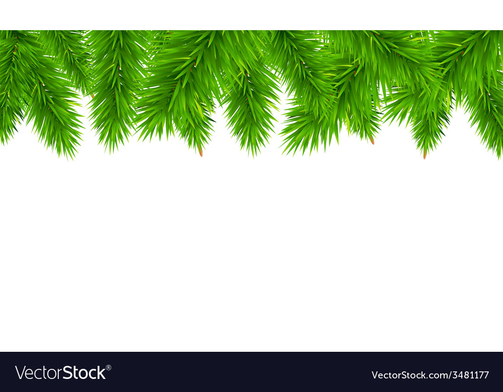 Fir tree border vector | Price: 1 Credit (USD $1)