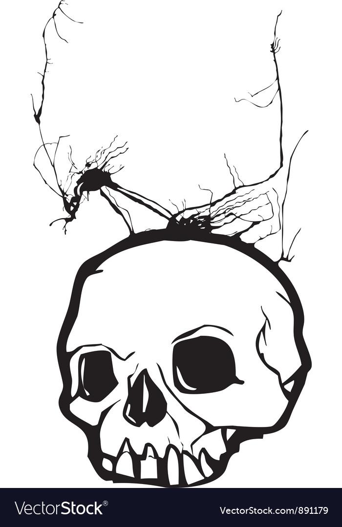Nightmare skull vector   Price: 1 Credit (USD $1)