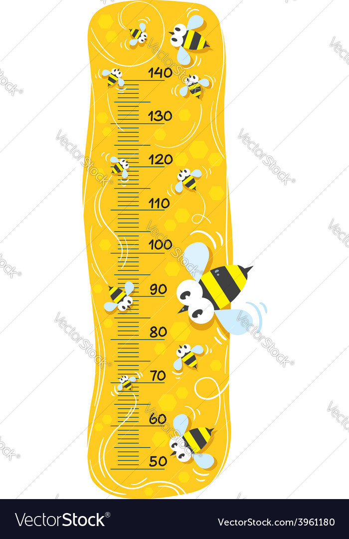 Meter wall or height meter with funny bees vector | Price: 1 Credit (USD $1)