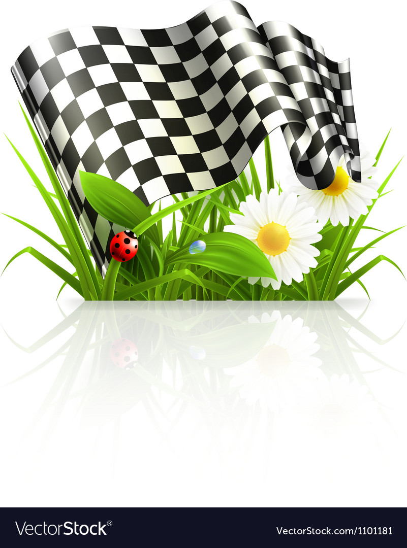 Checkered flag in grass vector | Price: 1 Credit (USD $1)