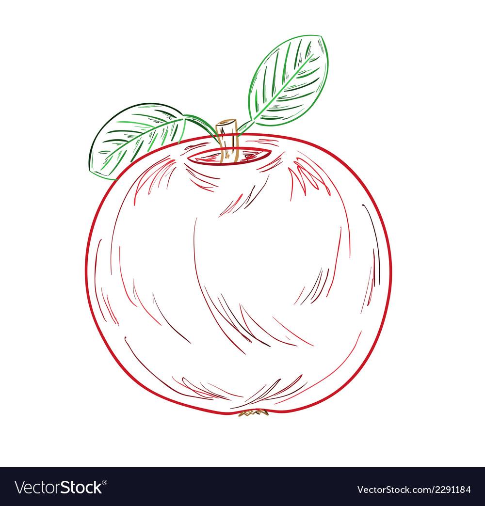 Apple sketch vector | Price: 1 Credit (USD $1)