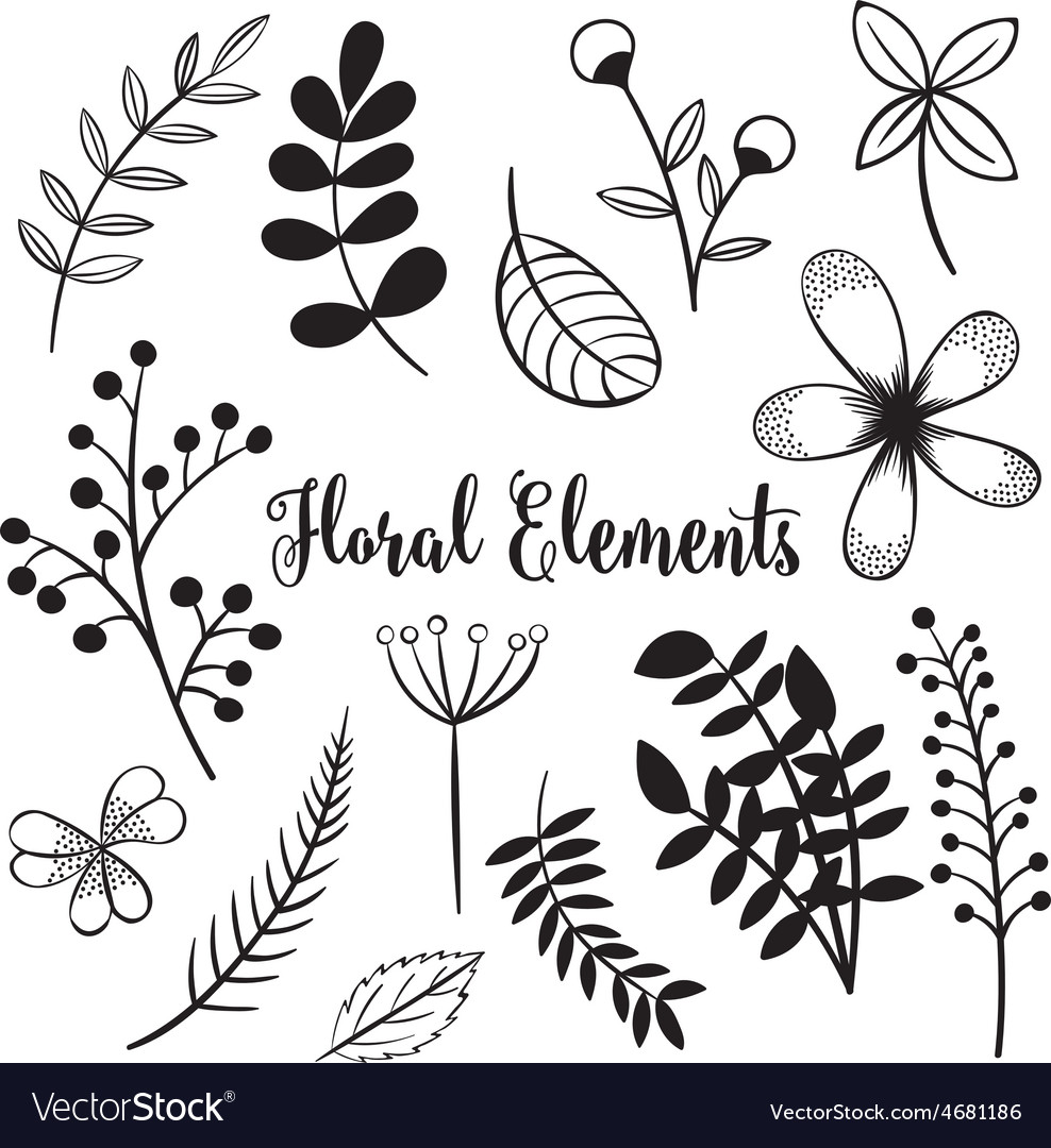 Hand drawn flowers and foliage elements vector | Price: 1 Credit (USD $1)