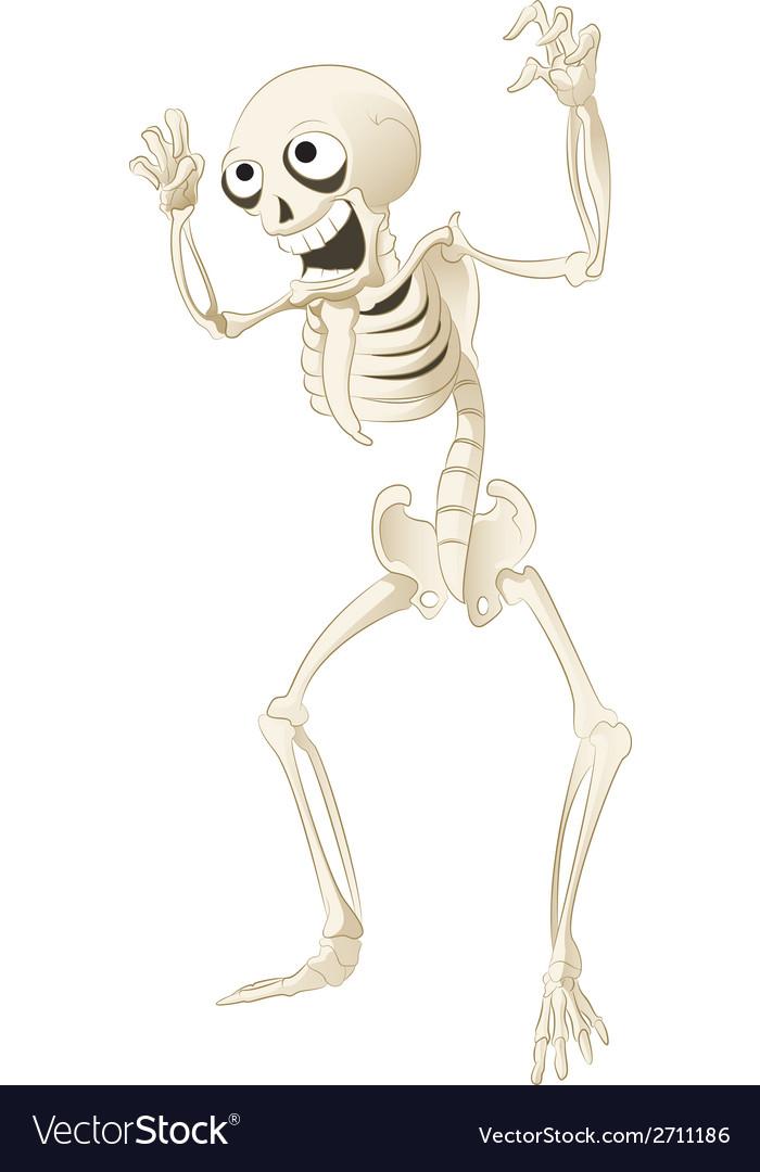 Sceleton vector | Price: 1 Credit (USD $1)