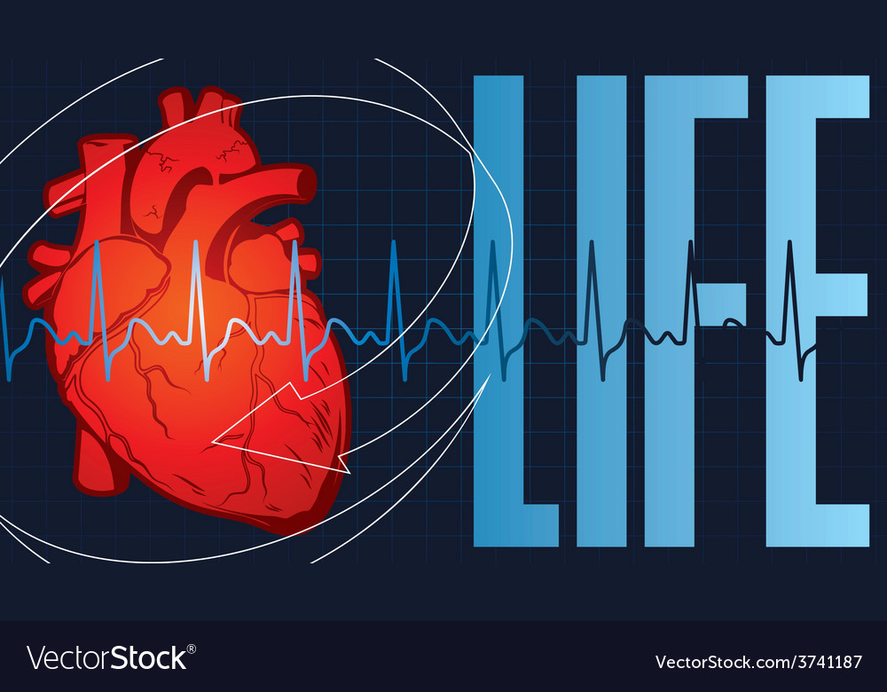 Life hart vector | Price: 1 Credit (USD $1)